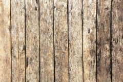 Old backgrounds and texture  wooden floor or wall Stock Photography
