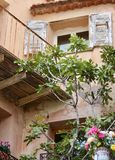 Old yard with balcony, shutters on windows, fig tree and vase with flowers. stock photos