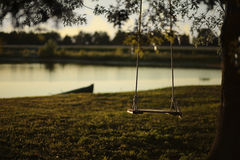 Old backyard tree swing Royalty Free Stock Images