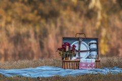 An old bag for picnic. royalty free stock photography