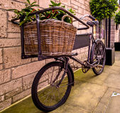 An Old Bakers Bicycle. This old bakers bike is situated outside of  tea rooms. Used for decorative purposes, the basket which, at one time would have been filled Royalty Free Stock Image