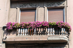 Old balcony with flower Stock Photo