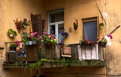 Old balcony with flowers stock photography