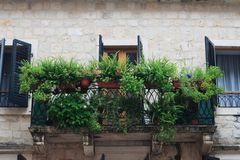 Old balcony with lots of flowers and greenery Stock Photo