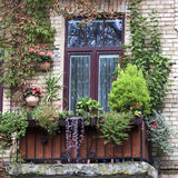 Old balcony overgrown with flowers Royalty Free Stock Photo