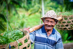 Old balinese man carrying his goods to market Stock Photography