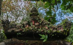 Balinese temple roof with greenery stock photography