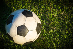 Old Ball in Grass Field Stock Image