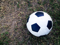 Old ball on the green grass Stock Images