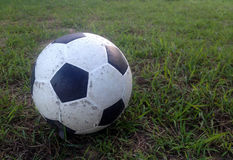 Old ball on the green grass Royalty Free Stock Photography