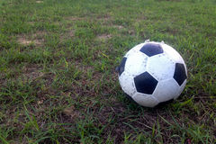 Old ball on the green grass Royalty Free Stock Image