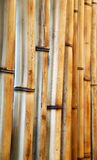 Old bamboo Stock Images