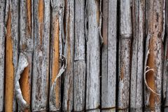 Old Bamboo Royalty Free Stock Images
