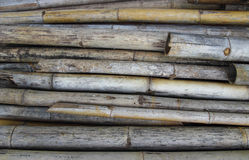The old Bamboo. Background Royalty Free Stock Photo