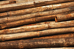 Old bamboo background. Show wooden texture background Royalty Free Stock Image