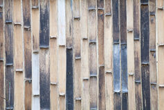 Old bamboo fence ,background Stock Photos