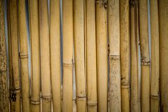 Old bamboo fence background. Vintage grunge wooden texture Stock Image