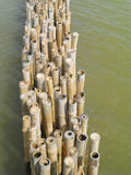 Old bamboo fence protect sandbank from sea wave Stock Images