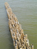 Old bamboo fence protect sandbank from sea wave Stock Image