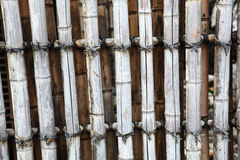 Old bamboo fence. Old and weathered bamboo fence Stock Photography