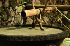 Old bamboo fountain Royalty Free Stock Photo