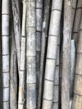 Old bamboo Royalty Free Stock Image