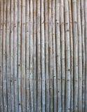 Old bamboo panel background Royalty Free Stock Images