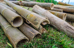 Old Bamboo Slice, Thailand Royalty Free Stock Images