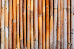 Old bamboo wall Stock Image