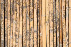 Old bamboo wall Royalty Free Stock Photos