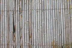 The old bamboo wall background. Stock Images