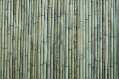 old bamboo wall background Stock Photos