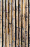 Old bamboo wall for background Royalty Free Stock Photo