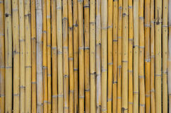 old bamboo wall background Royalty Free Stock Image