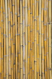 old bamboo wall background Stock Photography