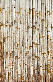 Old bamboo wall with green leaves. Oriental background Stock Photography