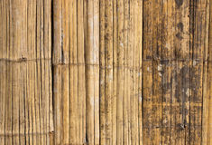 Old bamboo wall texture Royalty Free Stock Photography