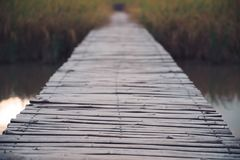 Old bamboo wooden bridge above the river and rice field stock photos