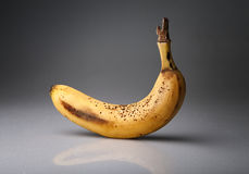 Old banana Royalty Free Stock Images