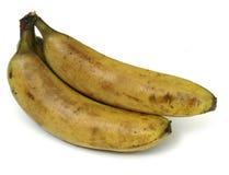 Old bananas. A bunch of bananas going bad Royalty Free Stock Image