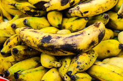 Old bananas. Many of the stackable Stock Photos