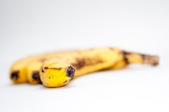 Old bananas Stock Photo
