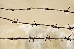Old barb wire. Three rusty old barb wires Royalty Free Stock Images