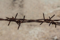 Old barbed wire Royalty Free Stock Images