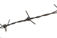 Old barbed wire Royalty Free Stock Photo