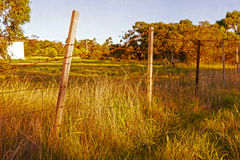 Old barbed wire fence Royalty Free Stock Images