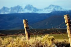 Old Barbed Wire Fence Stock Photography