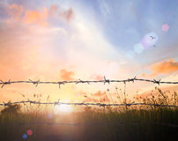 Free Old Barbed Wire Fence Royalty Free Stock Photo - 73334845