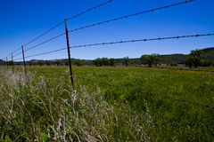 Old Barbed Wire Fence Royalty Free Stock Photography