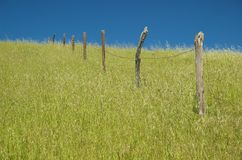 An old barbed wire fence stands alone in the grass Royalty Free Stock Image